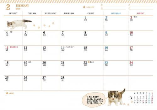 ふわふわ Cats Diary 2019