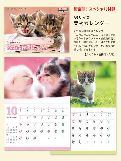 付録「小さいサイズのふわふわこにゃんこ」カレンダー