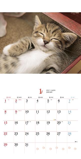 ましかくカレンダー ふわもふにゃんこ