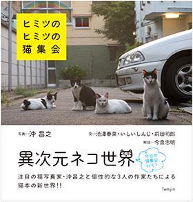 【書籍】ヒミツのヒミツの猫集会