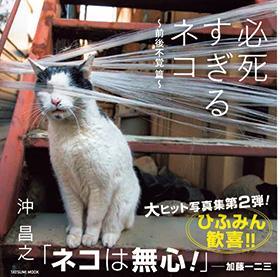 【書籍】必死すぎるネコ 前後不覚篇