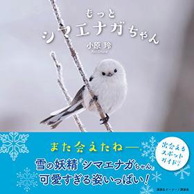 【書籍】もっとシマエナガちゃん