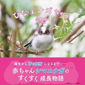 【書籍】ひなエナガちゃん
