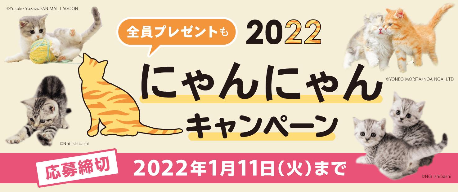 2022にゃんにゃんキャンペーン