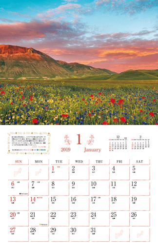 幸せの花風景 Romantic Flowers 2019
