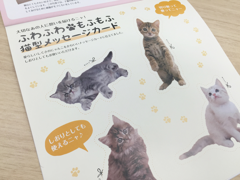 ましかくカレンダー ふわもふにゃんこ「猫型メッセージカード」