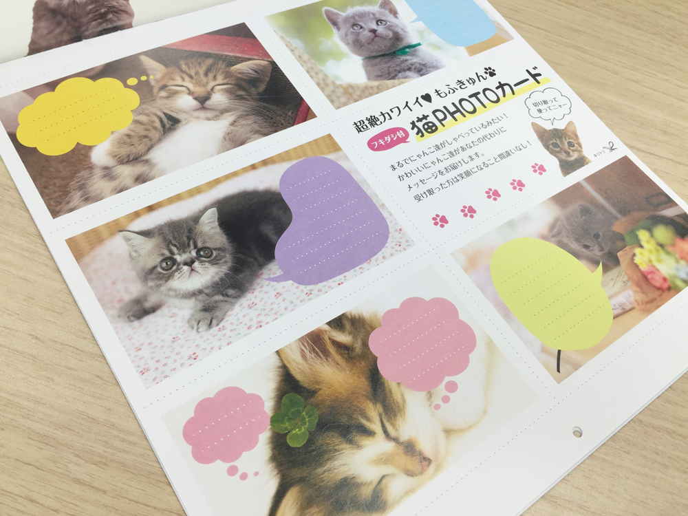 ましかくカレンダー ふわもふにゃんこ「猫PHOTOカード」