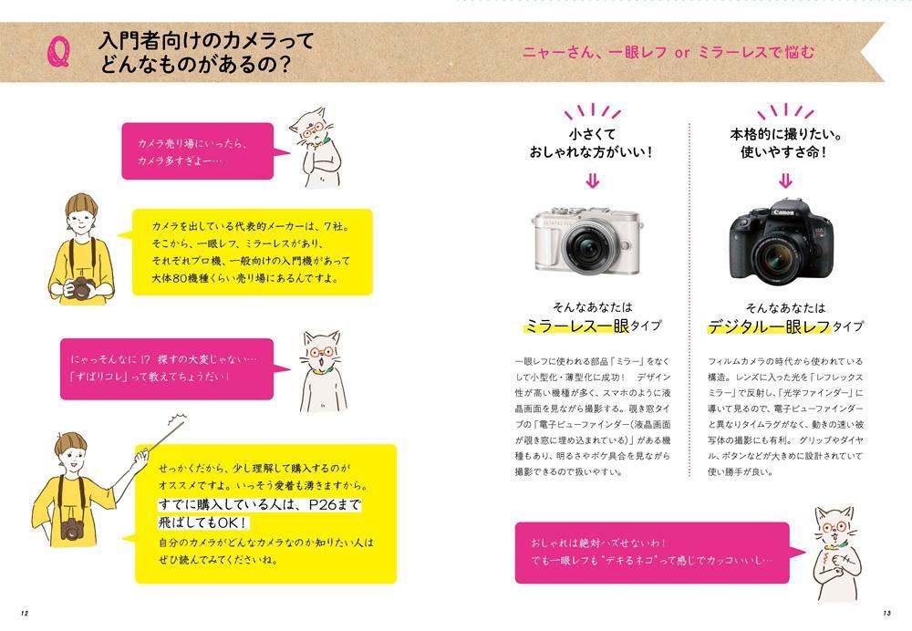 入門者向けのカメラってどんなものがあるの?